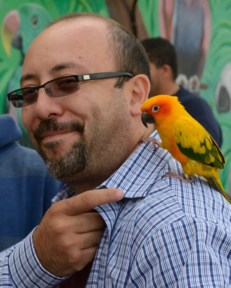 bird-paradise-palooza-2f