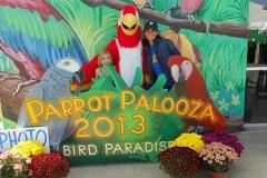 bird-paradise-palooza-13