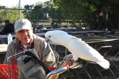 bird-paradise-palooza-2k