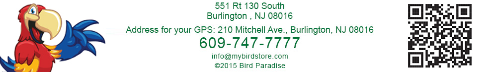 Bird Paradise location link