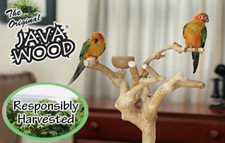 Java Wood Parrot Stands