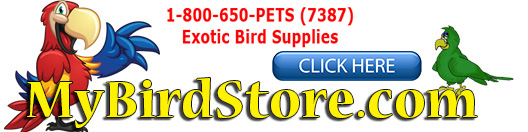 mybirdstore-discount_parrot_supplies_link